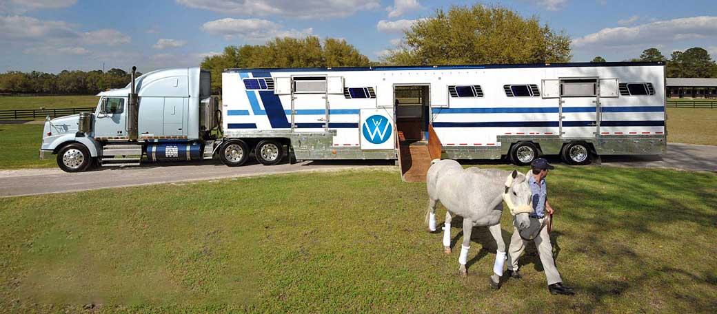 Horse Shipping, Shipping Horses