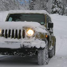 Snowbird Car Shipping Tennessee